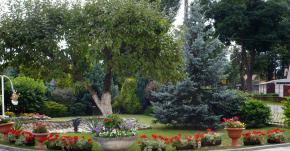 Galeria Tereny zieleni